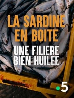 La sardine en boîte, une filière bien huilée_Cristal-Publishing