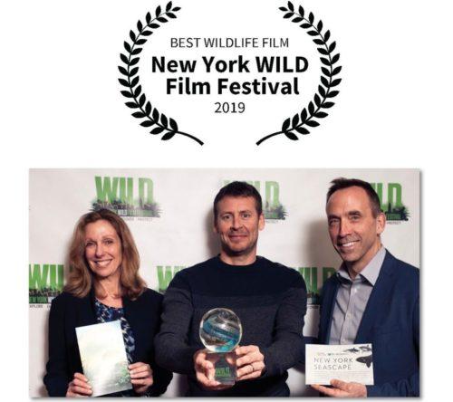 «700 requins dans la nuit» récompensé au New-York Wild Film Festival