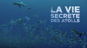 LA VIE SECRÈTE DES ATOLLS_CristalPublishing
